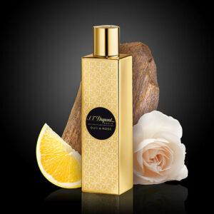 Oud & Rose perfume St Dupont